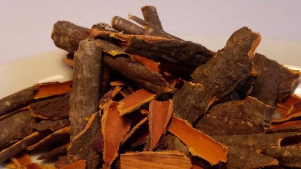 Alder buckthorn bark
