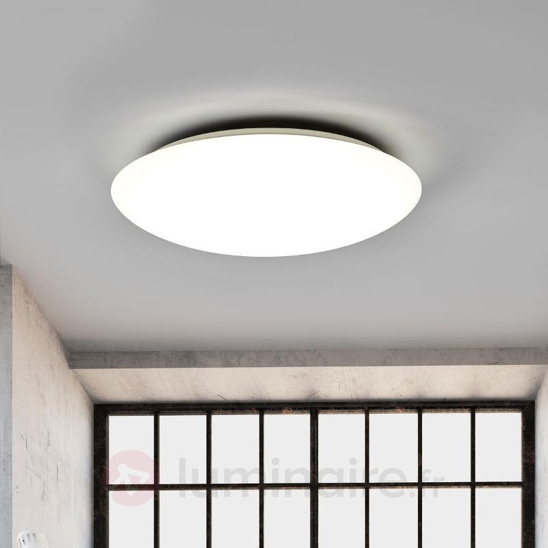 Daria - plafonnier LED à couleur réglable - Plafonniers LED
