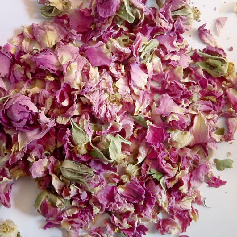 Medicinal plants - Rose petals (flores rosae)