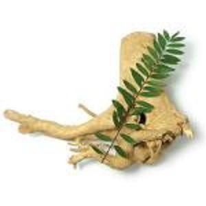 Выдержка из Тонгкат Али - Экстракты растений
