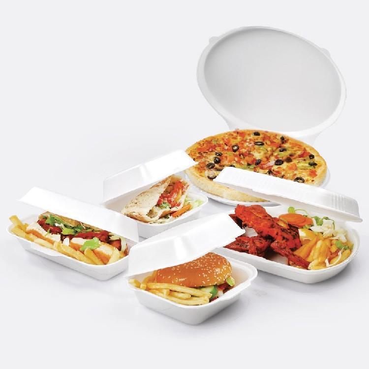Foam Containers - Foam Food Carrier
