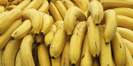 BANANAS - BANANAS IMPORT AND EXPORT