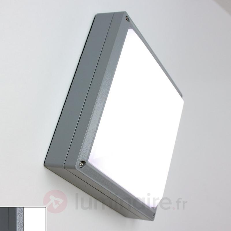 Applique SUN 11 LED 13 W - Plafonniers LED