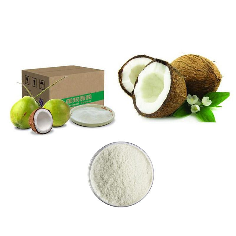 coconut powder - Fruit&Vegetable Powder
