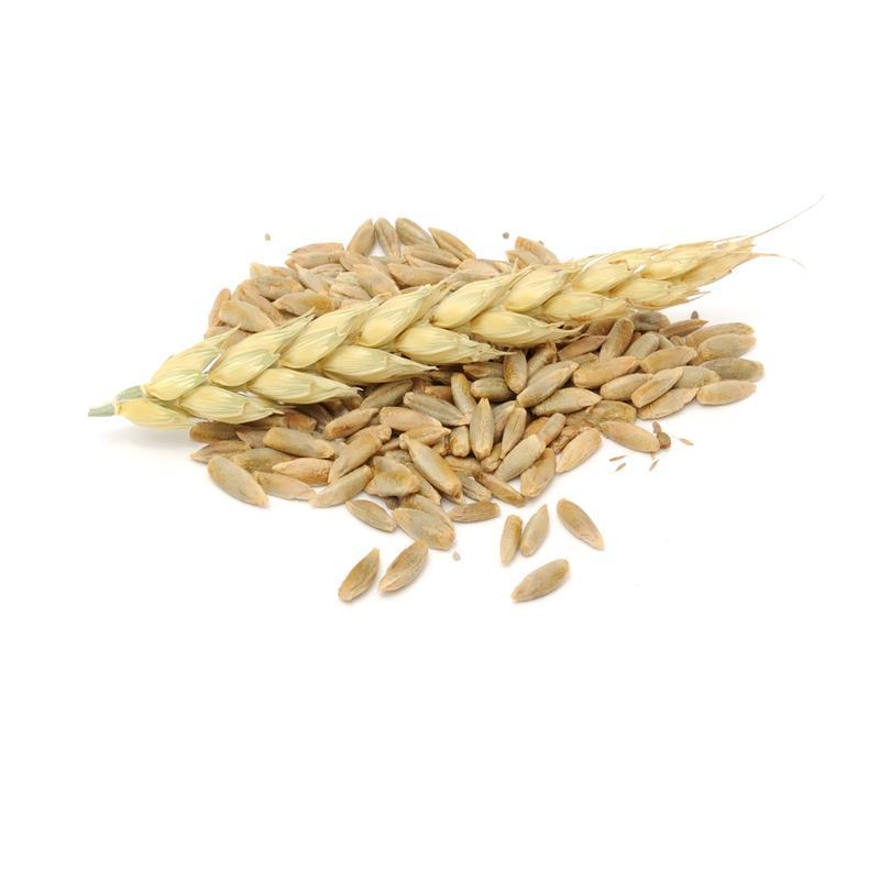 Rye grain (organic) -