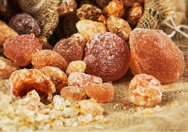 ARABIC GUM - A key ingredient in most popular food which is well know worldwide