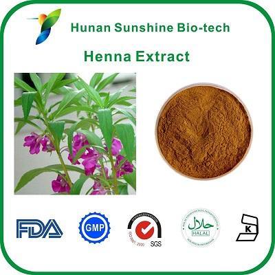 Poudre naturelle d'extrait de henné au camphire - Apparence: Poudre fine jaune brune   Garantit le temps de la nature: Deux ans