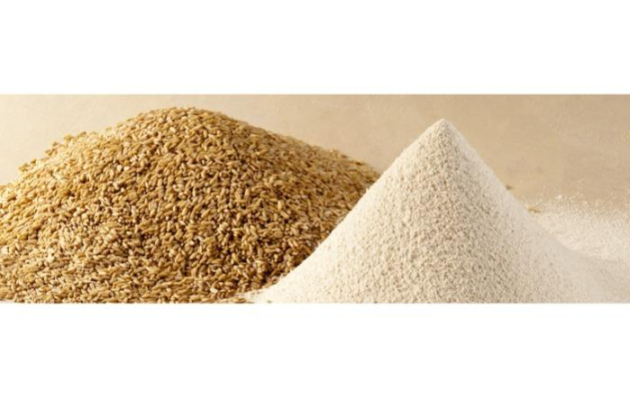 ORGANIC FLOUR - Oat flour and oatmeal organic and conventional for baby food and diet food