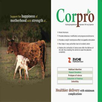 Veterinary Hydroxyprogesterone Injection - Veterinary Hydroxyprogesterone Injection