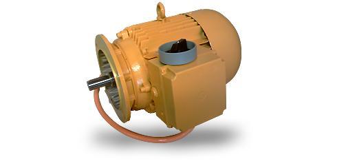 Electric Motors, Customised Versions - null