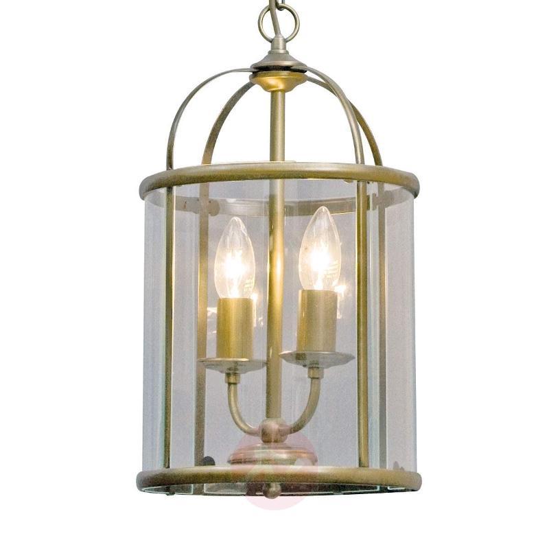 Decorative Pimpernel hanging light - Pendant Lighting