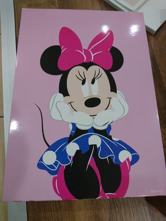 Kartony z certyfikatami Disney, Fsc i Nbcuniversal