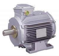 Three-phase induction motors - (F)LS Finish for high ambient temperatures 0.55 to 45 kW