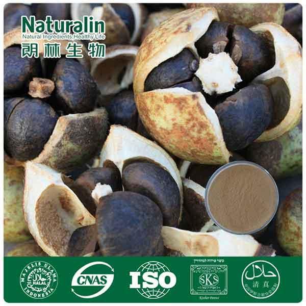 Tea Seed Extract(Tea Saponin)