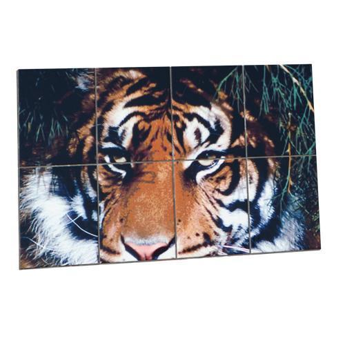 Carrelage blanc imprimable - 15 x 15 cm pour usage intérieur