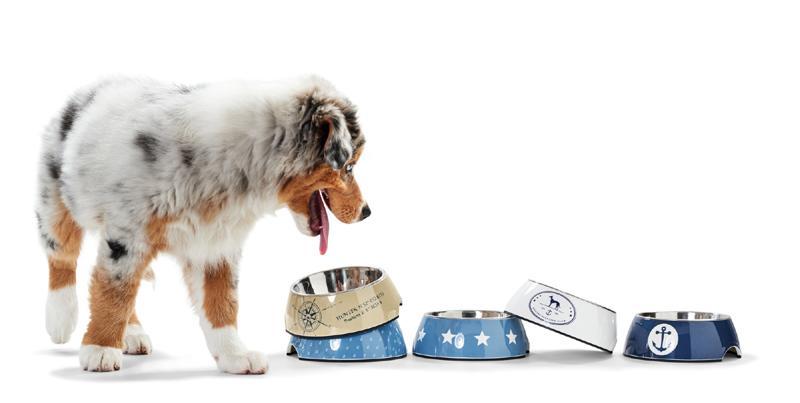 Gamelle pour chien Hunter -