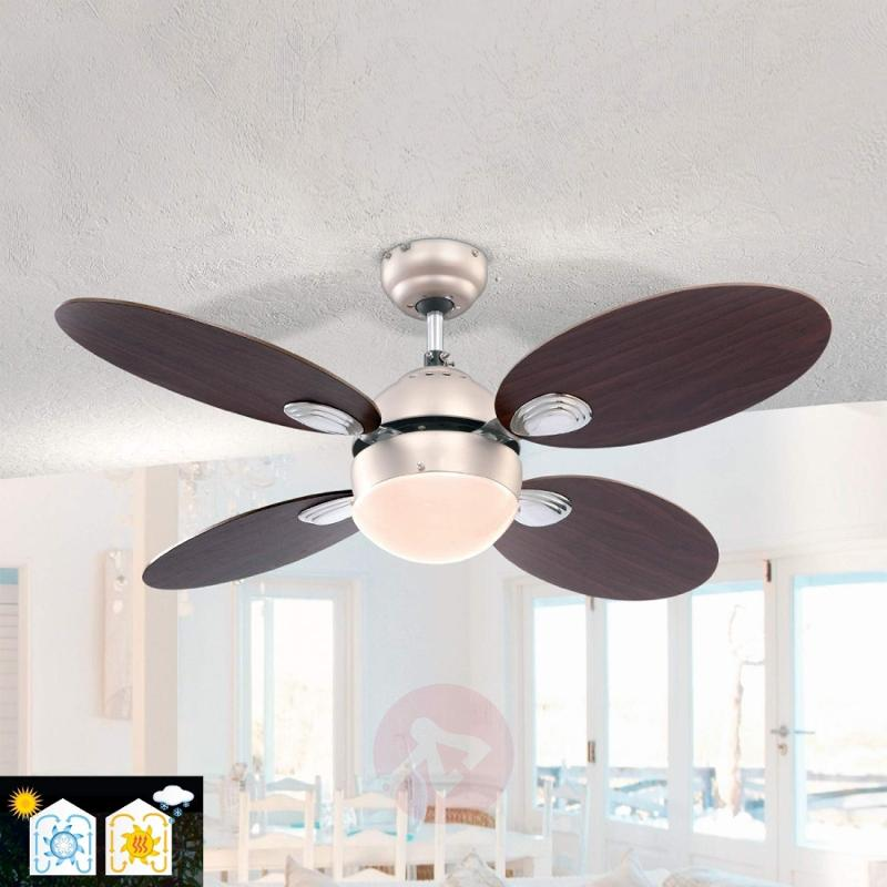 Wade ceiling fan with pull switch - fans