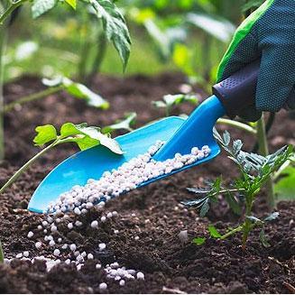 Bien choisir son engrais - Pour les plantations, le gazon ou le potager