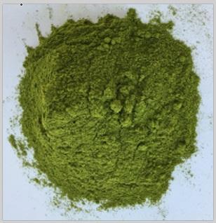 Bay leaves powder - Machine dried in Kraft bags