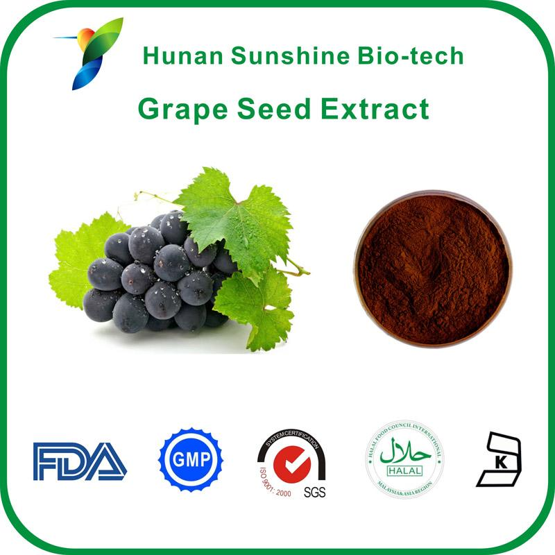 Grape Seed Extract With 95% proanthocyanidins(OPC) - Plant Extracts
