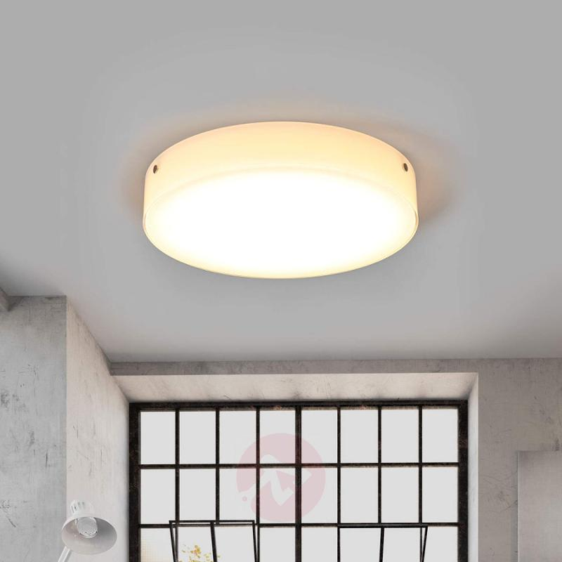 LED glass ceiling lamp Sole - indoor-lighting
