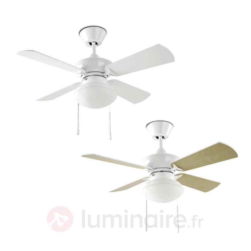 Ventilateur classique Bouvet avec éclairage - Ventilateurs de plafond lumineux