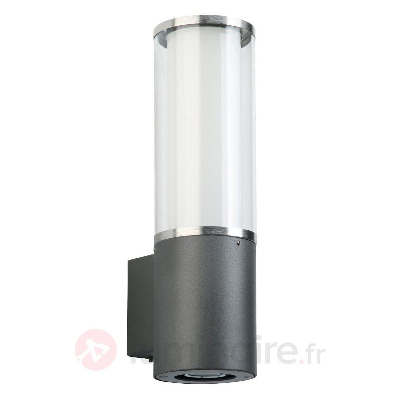 Applique d'extérieur Elettra avec projecteur - Appliques d'extérieur inox
