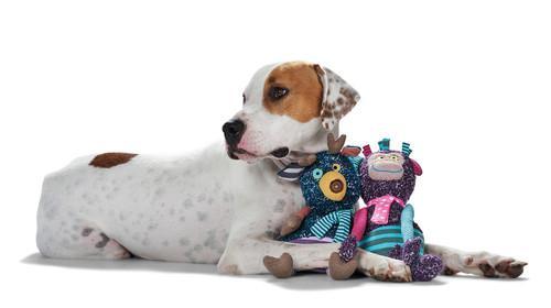 Jouets pour chiens Hunter -