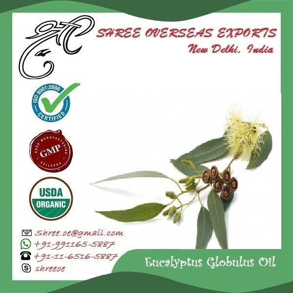 Organic Eucalyptus Globulus Oil - USDA Organic