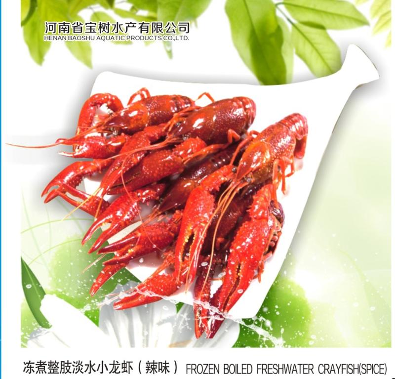 Frozen cooked whole freshwater cray