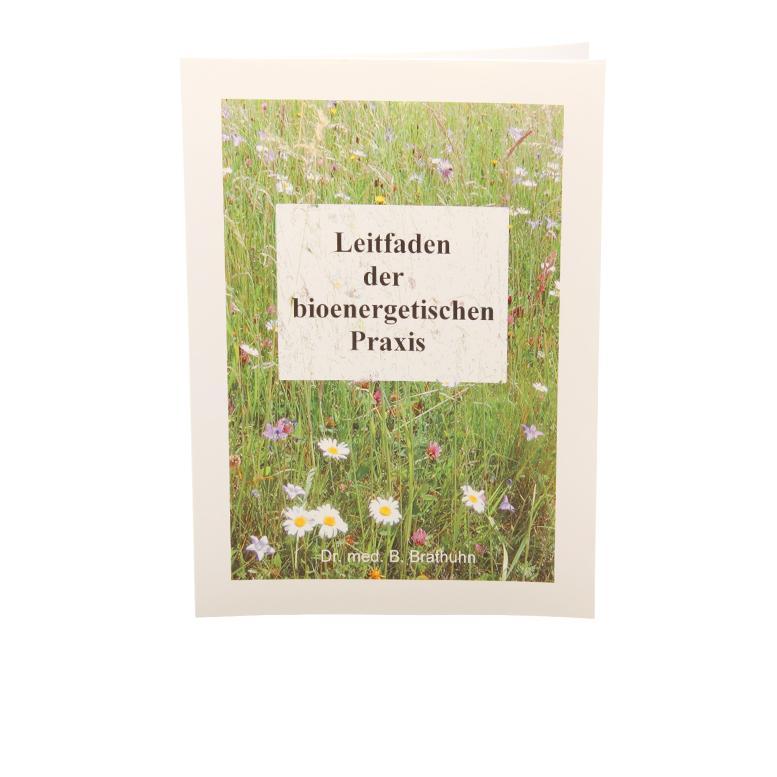 Leitfaden der bioenergetischen Praxis - Bücher und Zeitschriften