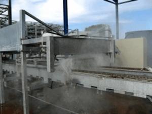 Ligne de lavage champignons