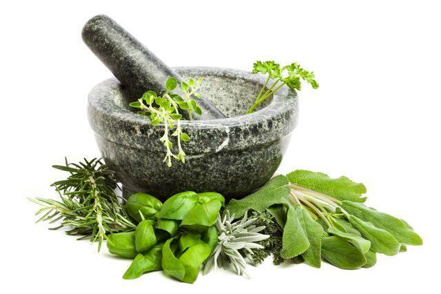 Chás e Plantas Medicinais - Oferta de mais de 700 tipologias
