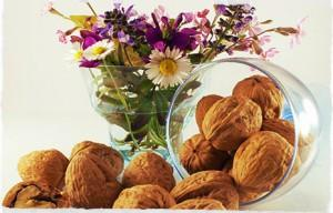 Pharmaceutical production. - Walnuts.