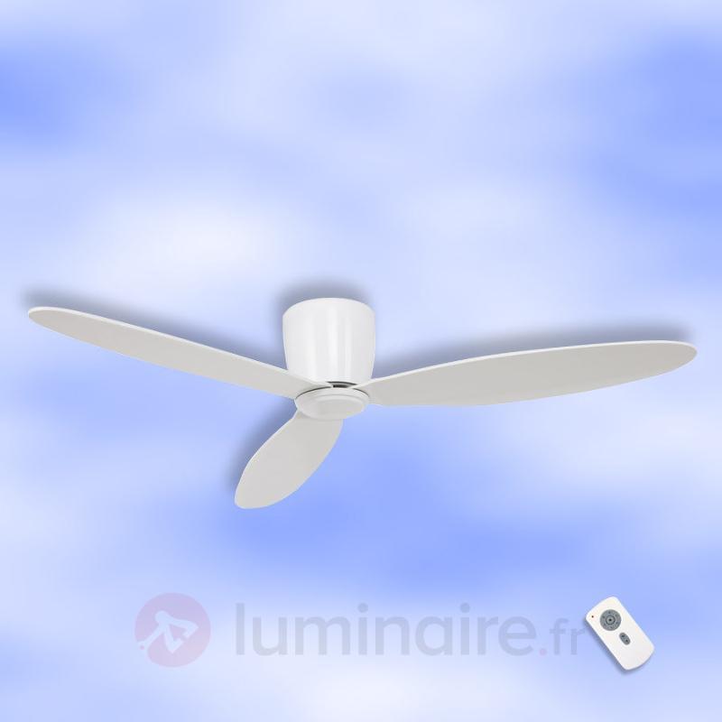 Ventilateur de plafond Eco Plano, blanc - Ventilateurs de plafond modernes