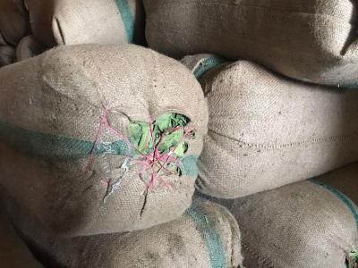 Bay leaves FAQ quality - Sun dried in bales 50kg each