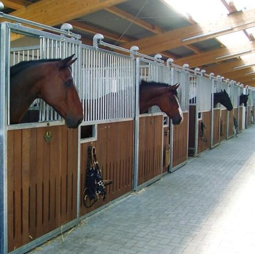 Customize Design European Style Horse Stall/Stable - Black Powder Coated Galvanized Horse Stable