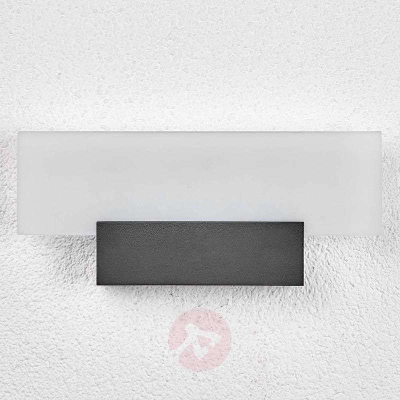 Impressive LED outdoor wall light Rieke - Outdoor Wall Lights