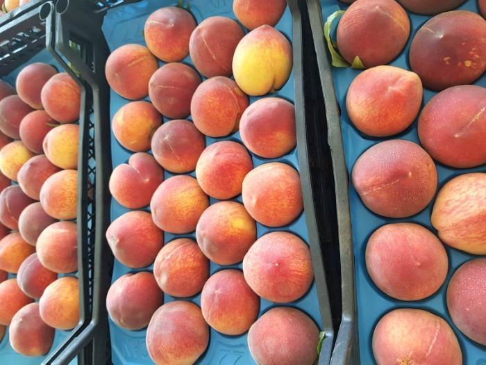 Персик - Сочные и очень вкусные турецкие персики в ассортименте.