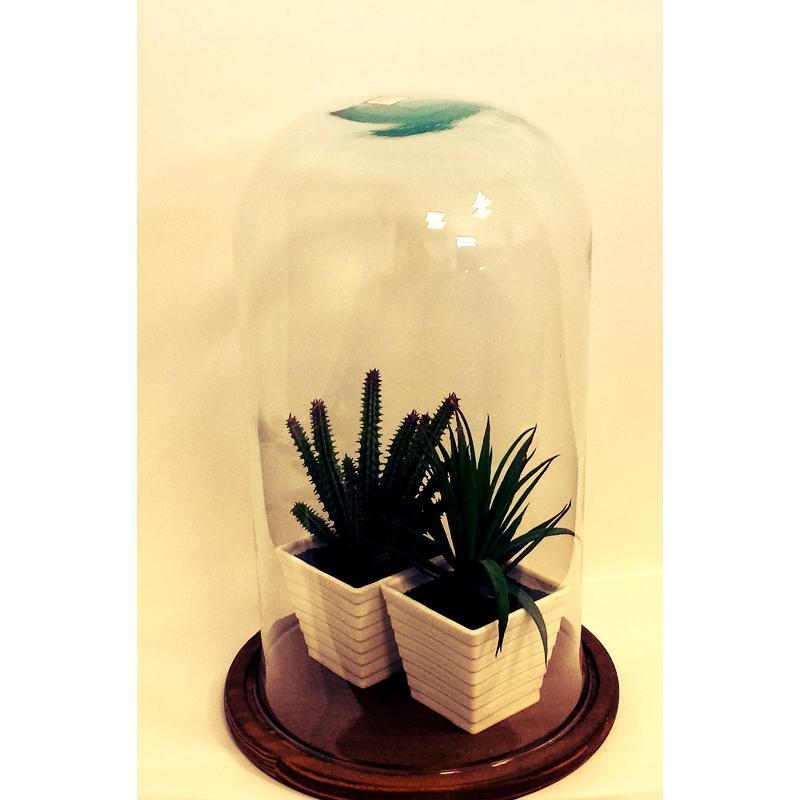 Cloche en verre décorative CAMPANA Grand modèle sur plateau de bois naturel - Cloches en verre
