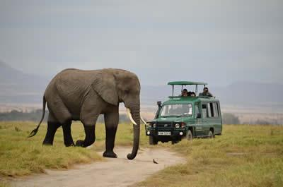 8 Days Kenya Holiday & Tour Package