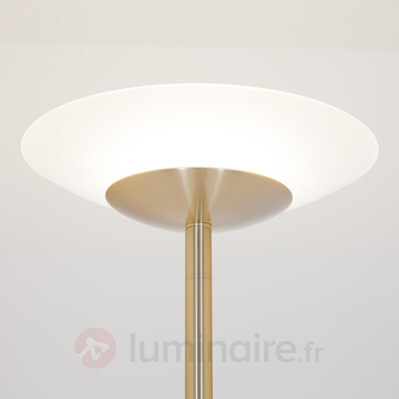 Minda - Lampadaire LED avec liseuse, laiton - Lampadaires LED à éclairage indirect