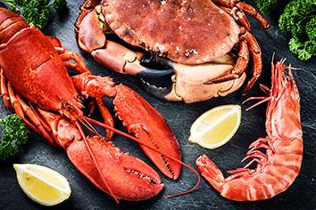 BAGS FOR SEAFOOD PACKAGING  - Packaging for seafood industry