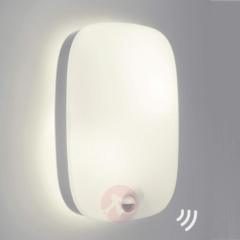 Dandelion - outdoor wall light with sensor - stainless-steel-outdoor-wall-lights