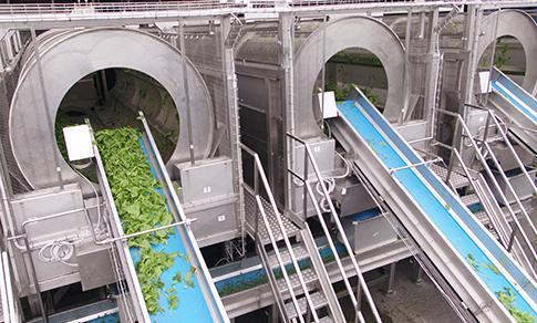 Lavatrici e piani di cernita - Macchine per Ricezione, lavaggio e trasporto