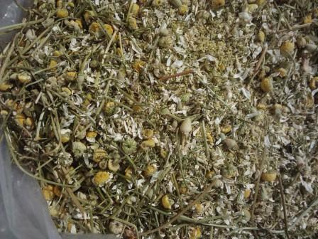 Flor de Manzanilla Seca (Deshidratada) - Matricaria chamomilla L