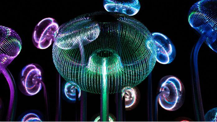 Bubble Forest (Blasenwald) -  Nizza, Frankreich -