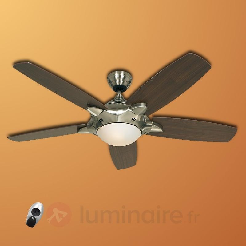 Ventilateur de plafond lumineux Mercury - Ventilateurs de plafond lumineux