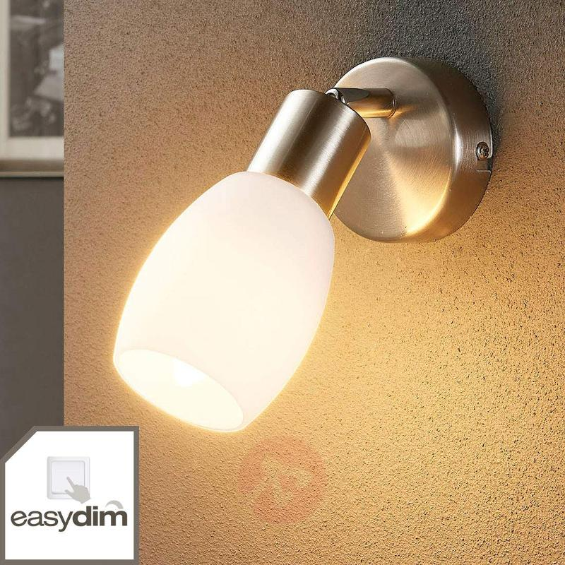 LED spotlight Arda with Easydim bulb - Spotlights
