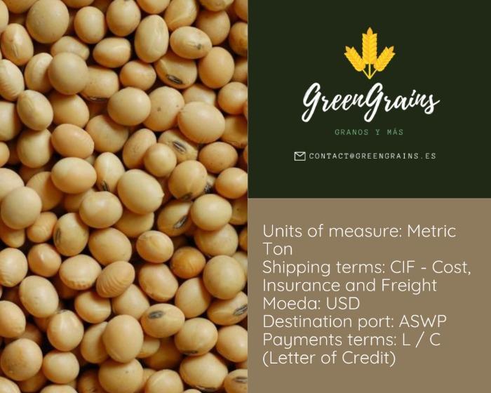 Soja - GMO e Não GMO